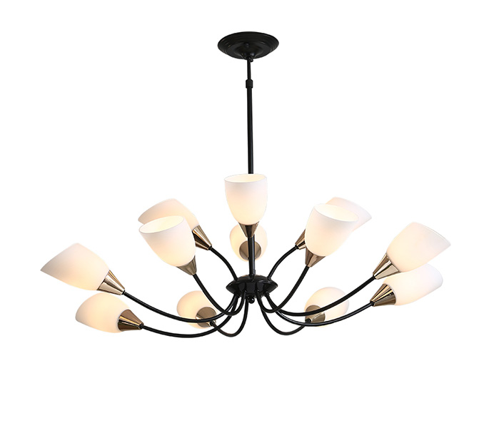 12 Lights Black Iron Chandeliers with Glass Shade