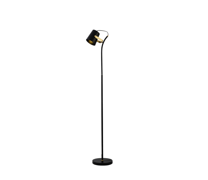 Black Iron E27 Floor Lamp with Iron Shade
